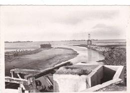 COURSEULLES-SUR-MER : Premier Port De France Libéré   (7J) - Courseulles-sur-Mer