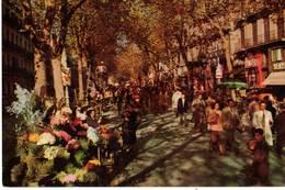 BARCELLONA - LA RAMBLA DE LAS FLORES     (SPAGNA ) - Altri