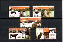 Belarus 2007 . Domestic Animals. 5v: 240, 440, 500, 1050, 1500.   Michel # 694-98 - Bielorussia