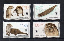 GERMANIA DDR - 1987 - Animali - Mammiferi - LONTRA - 4 Valori - Nuovi ** -  (FDC18568) - Nuovi