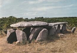 ILE GRANDE -  CPSM : L'allée Couverte ( Dolmens ) - France