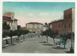 S.VINCENZO - PIAZZA UMBERTO    VIAGGIATA  FG - Livorno