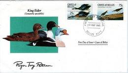 FDC CAYES Of BELIZE; Birds  /  Oiseaux, Lettre De Première Jour,  SOMATERIA SPECTABILIS - Entenvögel