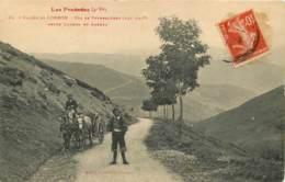VALLEE DE LOURON. Col De Peyresourde. Entre Luchon Et  Arreau Trés Bel Attelage. TBE    (scan Recto-verso) FRCR00022 P - Frankreich