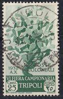 TRIPOLITANIA - 1932 - Yvert 127, Usato. - Tripolitania