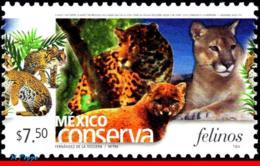 Ref. MX-2424 MEXICO 2005 ANIMALS, FAUNA, CONSERVATION, CATS,, FELINES, (7.50P), MNH 1V Sc# 2424 - Raubkatzen