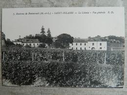 ENVIRONS DE FONTEVRAULT               SAINT HILAIRE               LA COLONIE            VUE GENERALE - Other Municipalities