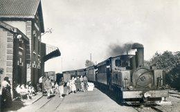 214A.  La Gare;arrivée Du Tortillard - Le Crotoy