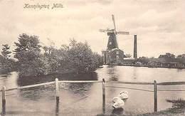 Kennington Mills, Swans, Windmill - Londen