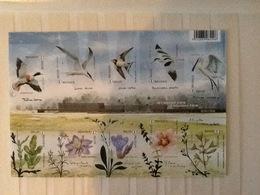2016 Buzin Het Nieuwe Zwin. Ongetand En Ongenummerd. - 1985-.. Oiseaux (Buzin)