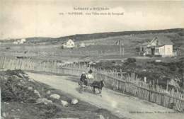 France - Saint-Pierre Et Miquelon - St.-Pierre - Les Villas Route De Savoyard - Attelage - Saint-Pierre-et-Miquelon