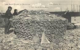 France - Saint-Pierre Et Miquelon - St.-Pierre - Une Pile De Morue Sèche - Saint-Pierre-et-Miquelon