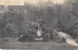CARTE POSTALE (1907)  TIEGHEM  GROTTE DANS LE BOIS AVEC AQUARIUMS - Other