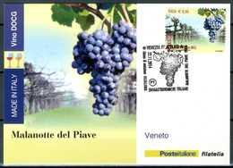 ITALIA / ITALY 2014 - Vino DOCG - Malanotte Del Piave - Veneto - Maximum Card Come Da Scansione. - Vini E Alcolici