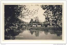 Carte De Olivet Le Pont Cotelle - Frankrijk