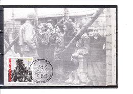3392/4 Guerre Et Paix - La Victoire 1945 - Libération Des Camps - La Déportation - Maximum Cards