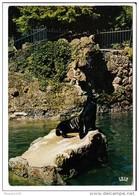 Carte ( Format 15 X 10,5 Cm ) MULHOUSE  Jardin Zoologique  Otarie De Californie ( Recto Verso ) - Mulhouse