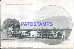 124710 CHILE COSTUMES ACARREO DE TRIGO CART A COW POSTAL POSTCARD - Chile