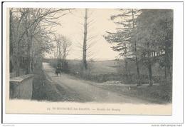 Carte De Saint Honoré Les Bains   Route Du Bourg    ( Recto Verso ) - Frankrijk