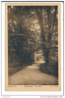 Carte De Chassemy  Bois Morin  ( Recto Verso ) - Francia