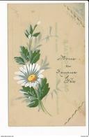 CARTE CELLULOID  Avec Dessin  ( Peinte )  Fleurs   ( Recto Verso ) - Postcards
