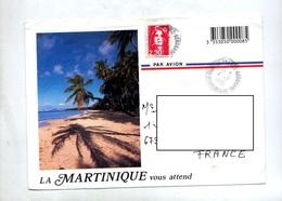 Lettre Cachet Fort De France Aeroport Martinique Hexagonal Illustré - Handstempels