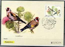 """ITALIA / ITALY 2019 - Europa 2019 - Uccelli / Birds - """"Cardellino"""" - Maximum Card, Come Da Scansione. - 2019"""