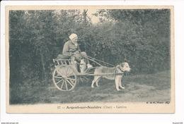 CARTE D' ARGENT SUR SAULDRE La Laitière  ( Voiture à Chien / Charrette à Chien )( Recto Verso ) - Argent-sur-Sauldre
