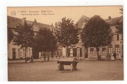 6.DIEST  Koeimarkt - Holle Griet  Marché Aux Vaches-Vieux Canon  FLION - Diest