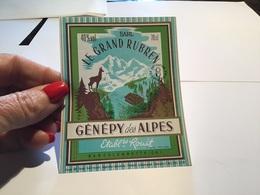 Génépi Des Alpes Genepy Barcelonnette - Autres