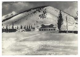 1481 - PANORAMICA ZEGNA ALPE STAVELLO CAMPI DI SCI 1954 BIELLA - Biella