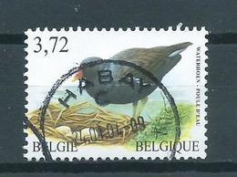 2003 Belgium 3,72 EURO Buzin Birds,oiseaux,vögel,waterhoen Used/gebruikt/oblitere - Belgique
