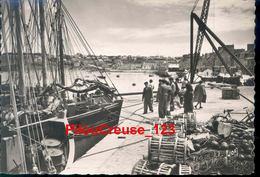 "29 Finistère - CAMARET - "" Le Port ""Belle Animation "" - Camaret-sur-Mer"