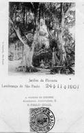 BRESIL JARDIM DA FLORESTA LEMBRANCA DE SAO PAULO (CARTE PRECURSEUR ) - São Paulo