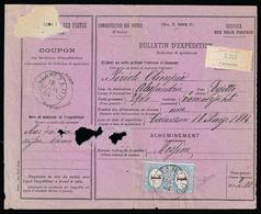 1884 - 1 Lira Azzurro Chiaro E Bruno (11), Coppia, Perfetta, Su Bollettino Di Spedizione Pacchi Per ... - Italien