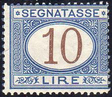 1874 - 10 Lire Azzurro E Bruno (14), Nuovo, Gomma Originale Integra, Perfetto. Molto Fresco E Raro. ... - Italien