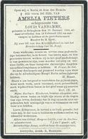 Doodsprentje: PIETERS Amelia: ° Bekegem, 12 Januari 1844,+ Bekegem, 19 Februari 1911. Echt Van Louis VANDAMME - Religion & Esotérisme