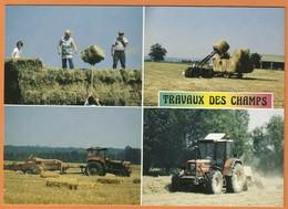 Travaux Des Champs Fenaison Tracteur Presse Foin Paille - Cultures