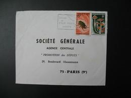 Lettre  Thème Insectes Chelorrhina   Champignons Termitomyces Congo    Pour La Sté Générale Bd Haussmann Paris - Oblitérés