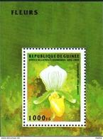 GUINEE -    Orchidée - Cypripedium Alma Gaevert - Guinea (1958-...)