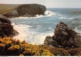 56-BELLE ILE EN MER-N°C-3435-C/0125 - Belle Ile En Mer