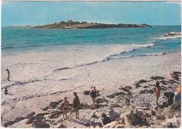 29. Gf. SANTEC. L'Ile Sieck à Marée Haute. 1586 - France