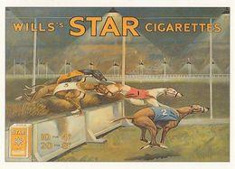 Wills Star Cigarettes Greyhound Race Advertising Postcard - Advertising