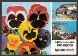 99825/ ARROMANCHES, Pensées De - Arromanches