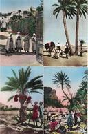 ALGERIE - ENSEMBLE DE 27 CARTES POSTALES - TAMANRASSET - OUARGLA - ALGER - M'SILA - CASTIGLIONE - ANIMATION - VILLE - - - Sin Clasificación