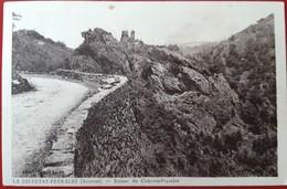 LA SALVETAT PEYRALES  Ruines Du Chateau Peyroles - Other Municipalities