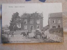 Cpa Hockay Betail à L'abreuvoir Edition Wayaffe Trois Ponts 1908 - Stavelot