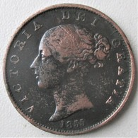 """ROYAUME-UNI, 1/2 Penny Victoria """"tête Jeune"""" 1855, TTB - 1816-1901 : Coniature XIX° S."""