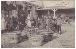 Les Vendanges En Champagne - Le Pesage Du Raisin - Y. Thuillier éditeur - Francia