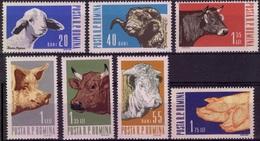 ROUMANIE 1889 à 1895 ** MNH Cochon Mouton Bélier Vache Boeuf Cow Pig Sheppe Merinos Sheep Lamb [GR] - Ferme